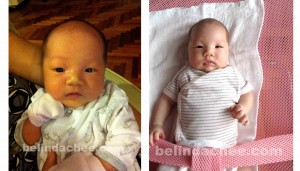 1 Month Old (left) and 2 Month Old (right) Looks pretty different, especially the size of the cheeks!